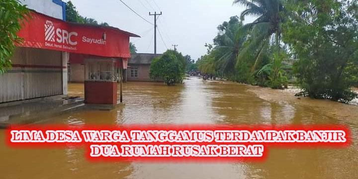 Lima Desa Warga Tanggamus Terdampak Banjir, Dua Rumah Rusak Berat